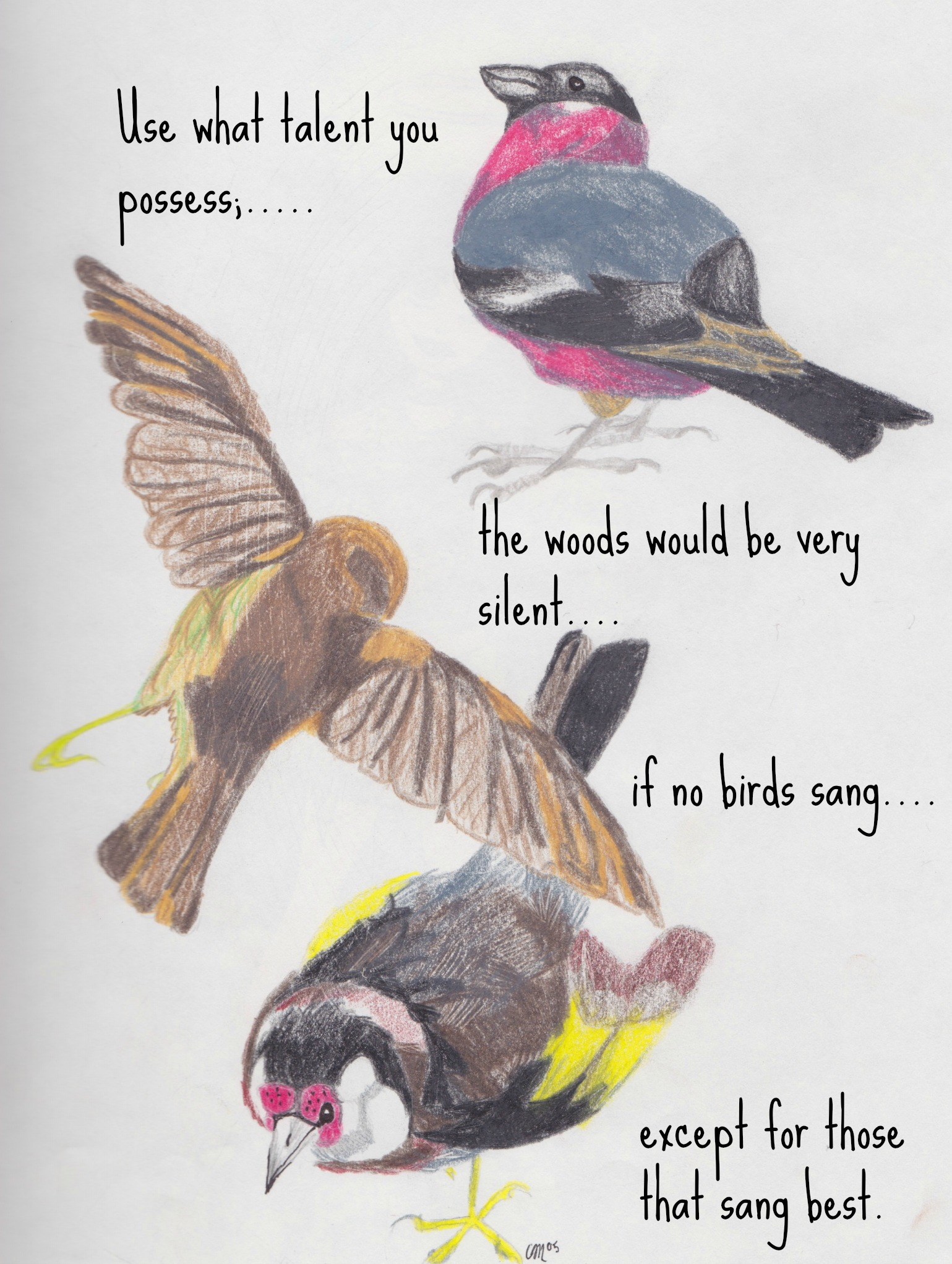 Quotes About Birds | Birds Talent Quote Somber Scribbler