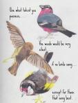 birds talent quote